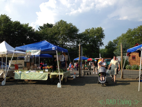 Robert_Treat_Farm_Market4