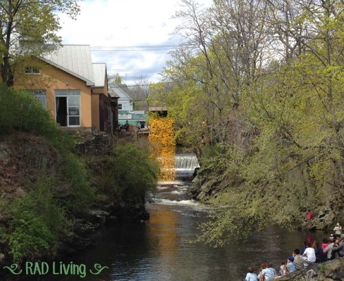 Milford-CT-Duck-Race-2014-8