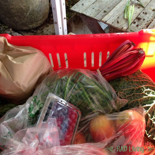 Robert-Treat-2014-CSA-Week-12-Basket