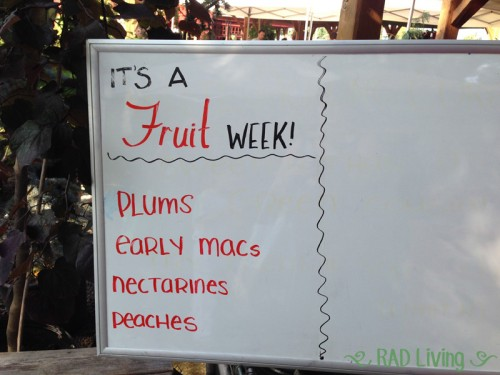 Robert-Treat-2014-CSA-Week10-Board-Fruit